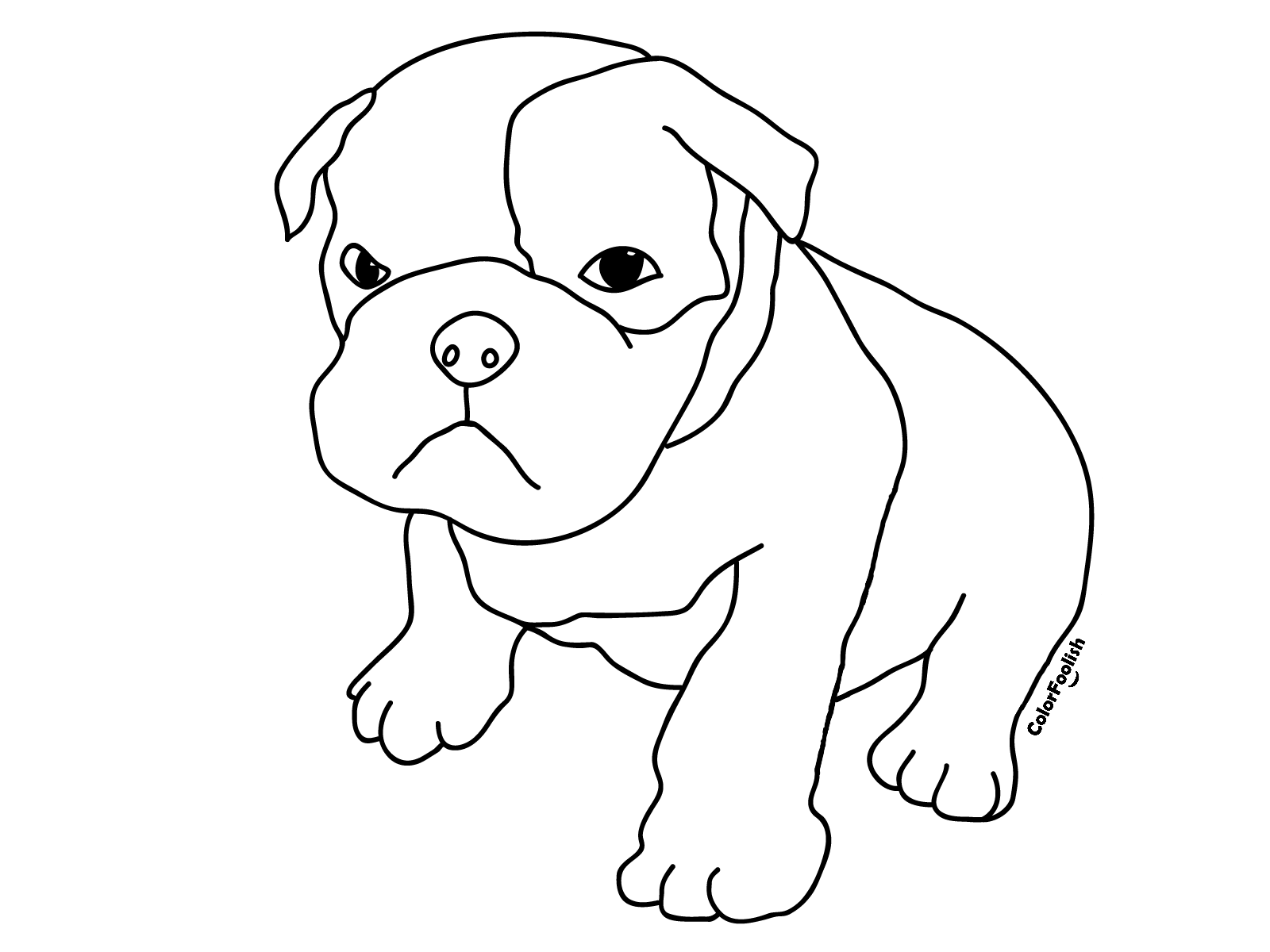 Coloring page of an angry boxer puppy