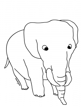 Coloring page of a big elephant