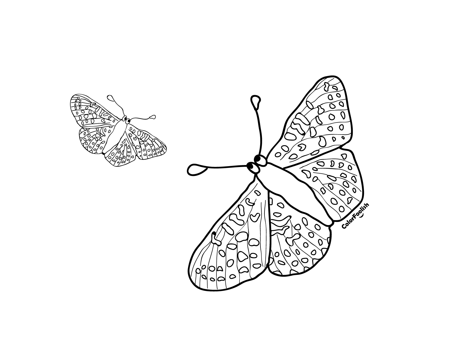 Coloring page with two butterflies