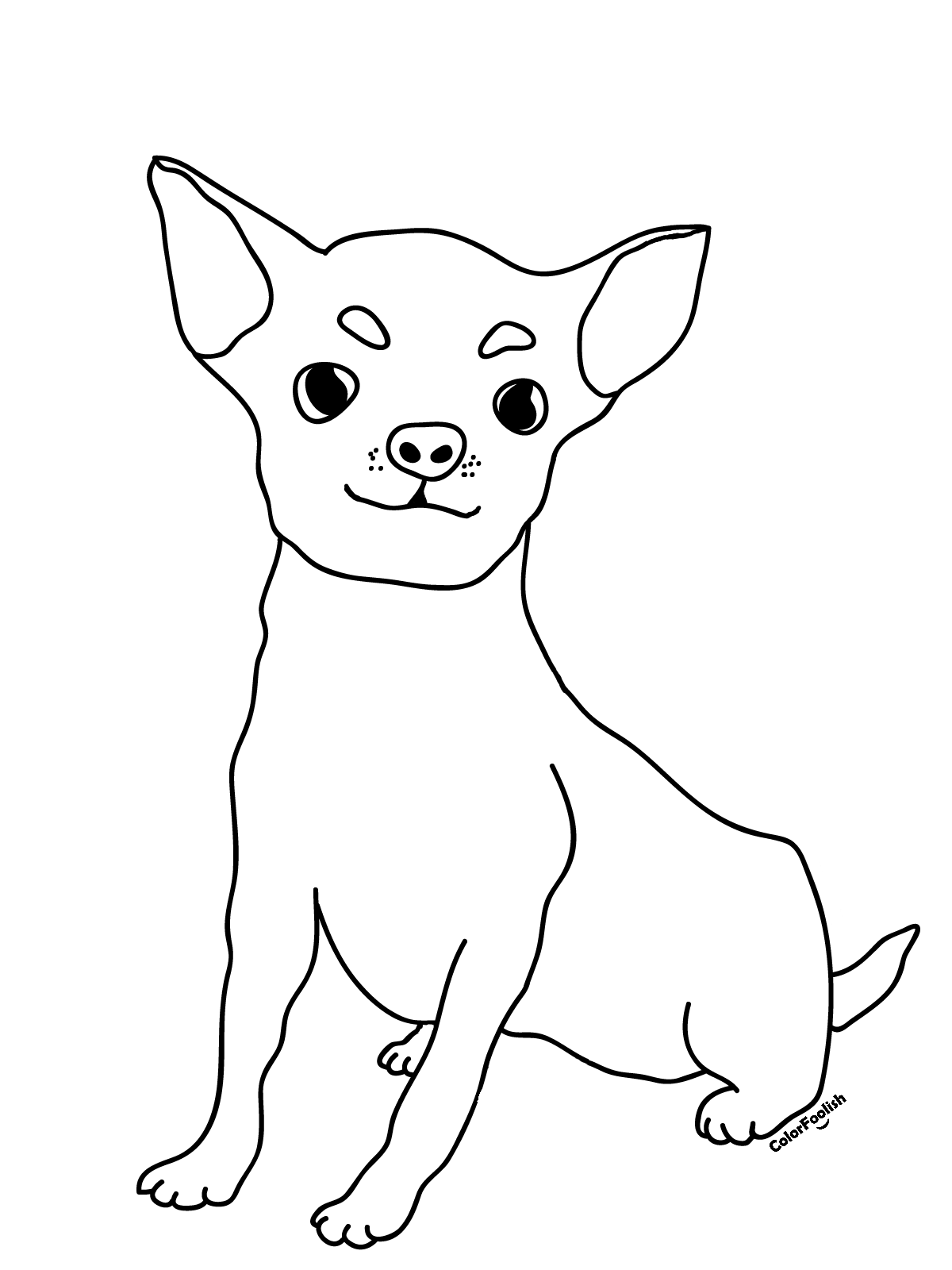 Coloring page of a chihuahua dog