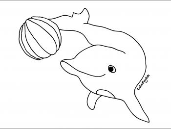 Kleurplaat van een dolfijn die met een bal speelt