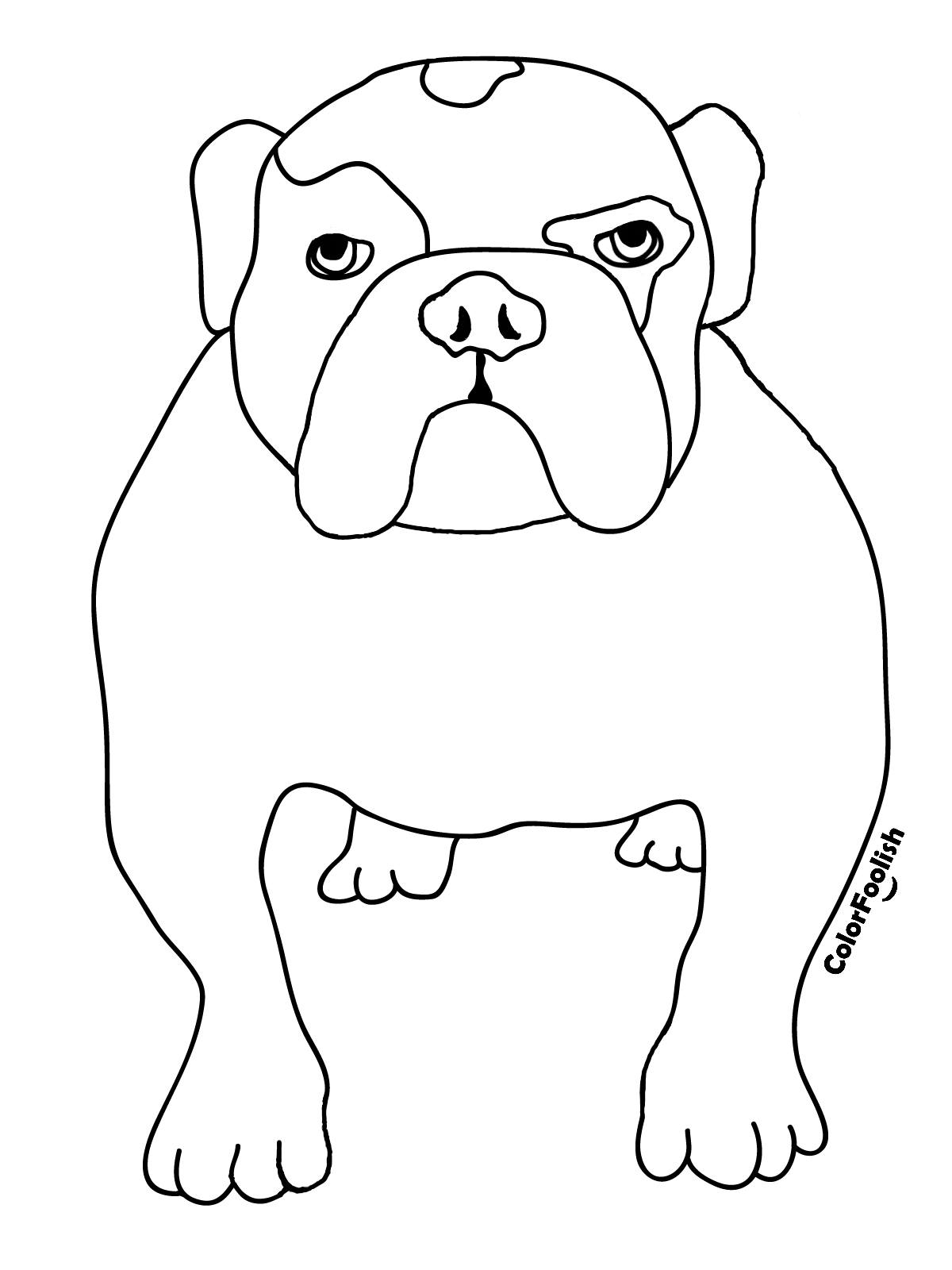 Coloring page of an English bulldog on all fours