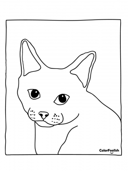 Coloring page of a European Shorthair cat
