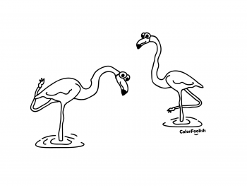 Coloring page of flamingos working out