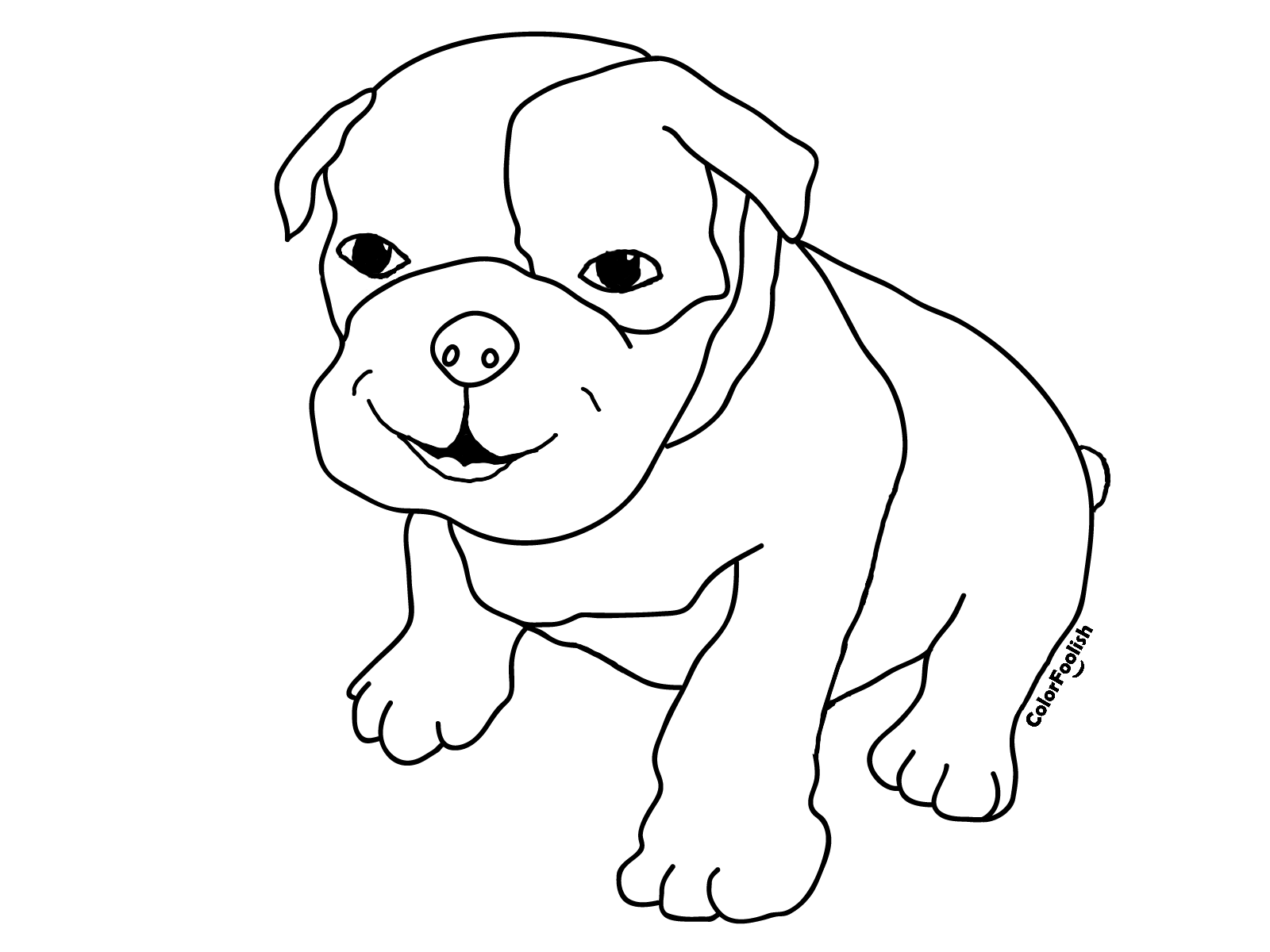 Coloring page of a smiling boxer puppy