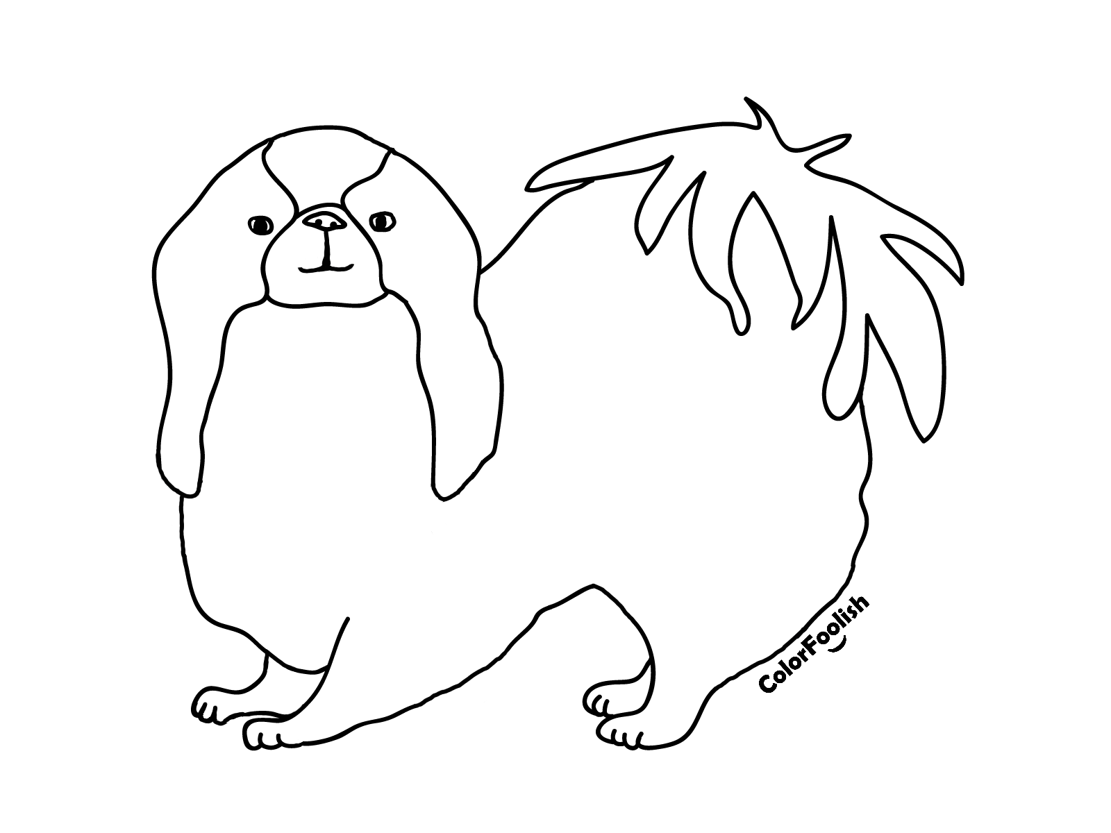Coloring page of a Japanese chin dog