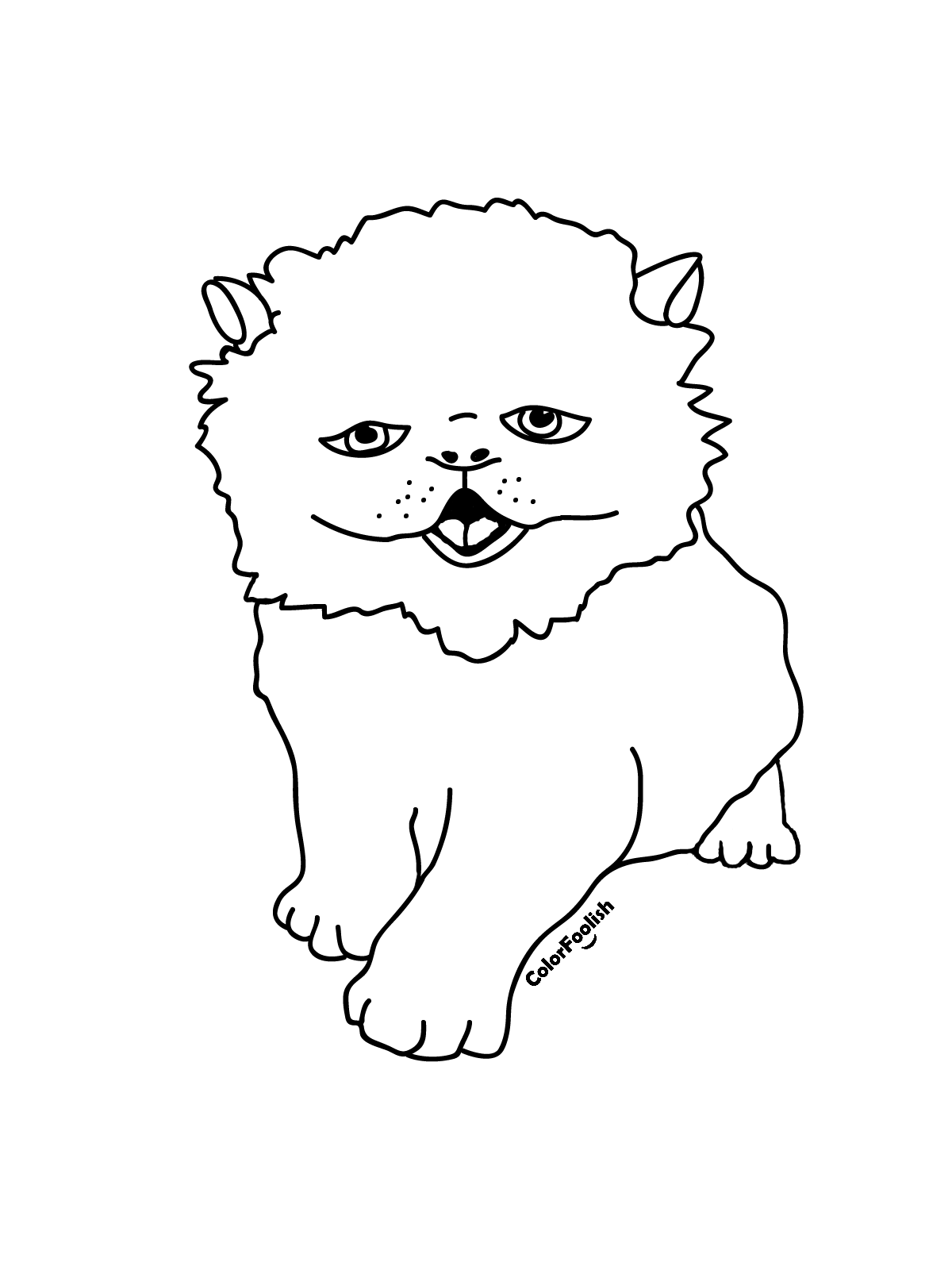 Coloring page of a Persian cat kitten