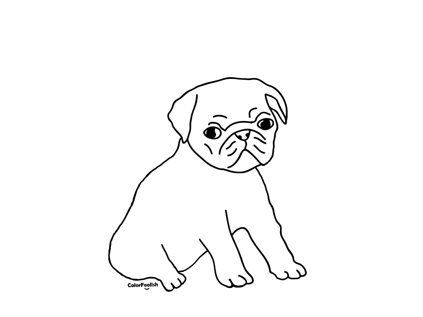 Coloring page of a pug puppy dog