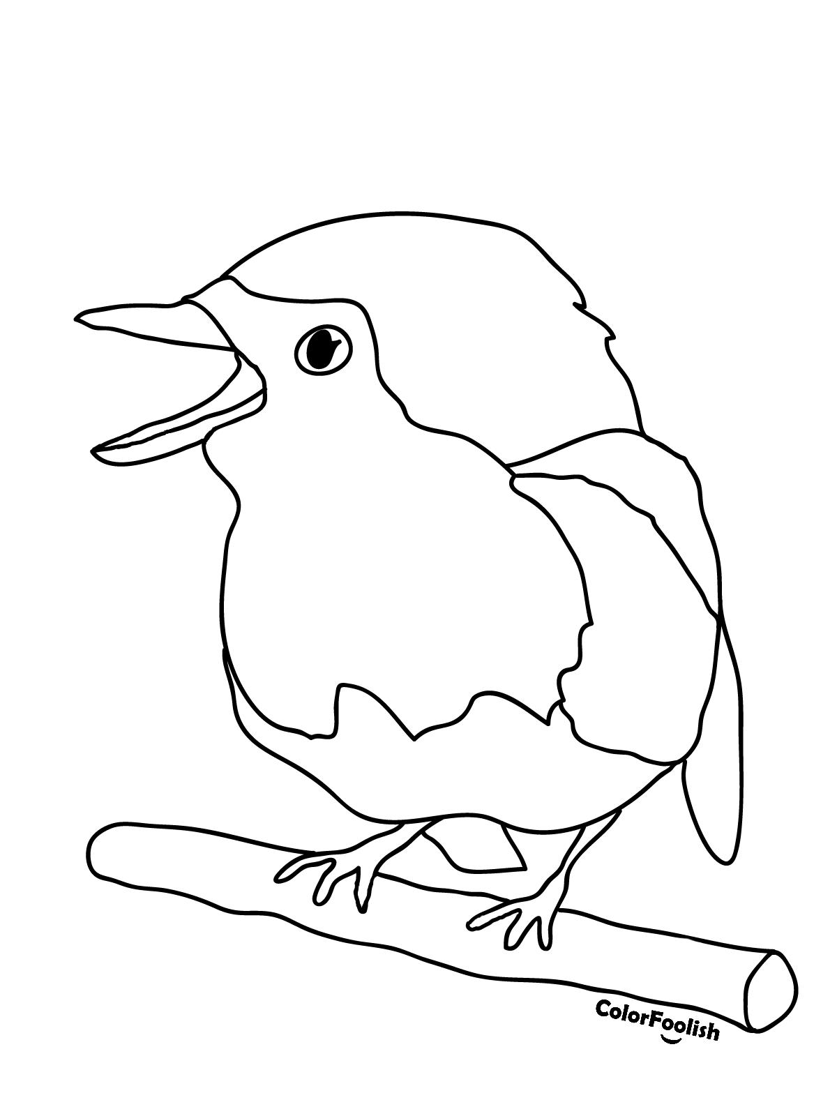 Malvorlage eines Rotkehlchens, das auf einer Niederlassung sitzt