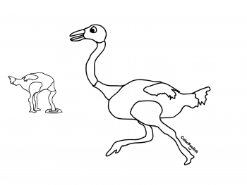 Coloring page of a running ostrich