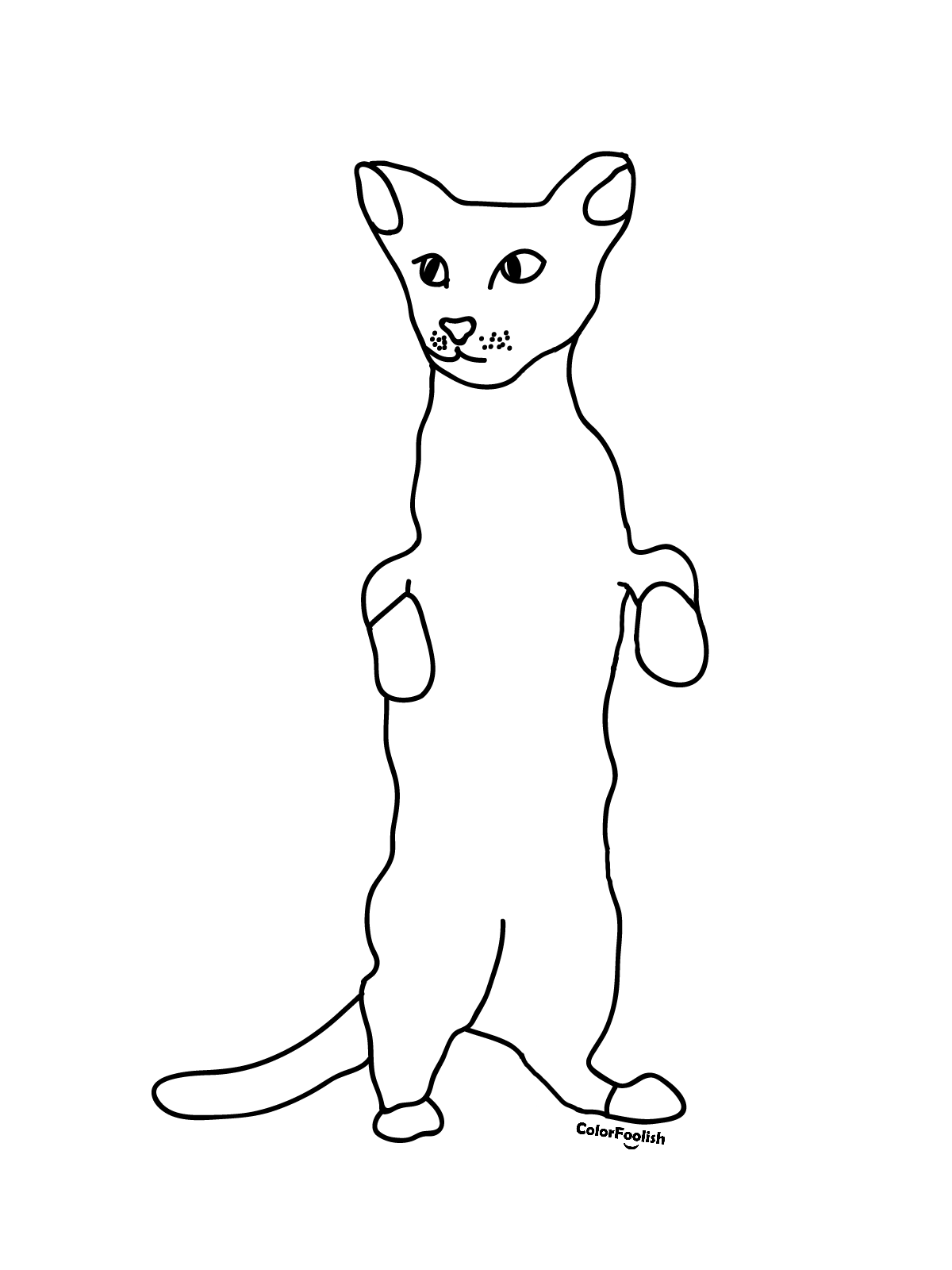 Coloring page of a curious Siamese cat