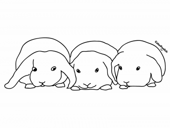 Coloring page of three sweet bunnies