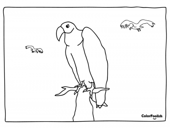 Coloring page of a vulture on a rock